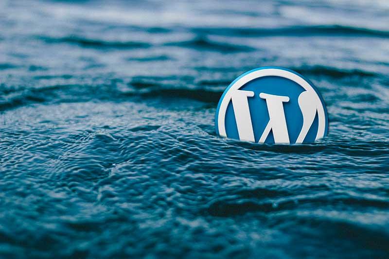especialistas wordpress